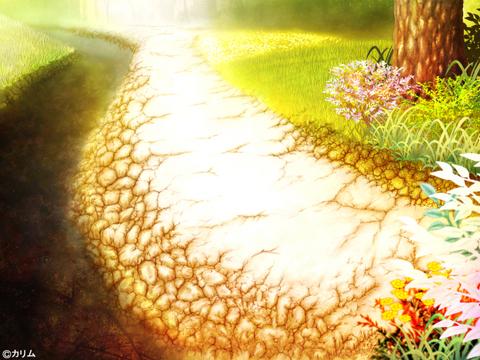 「風景画2014」09「川辺の小道 」制作04「木&植物」.jpg